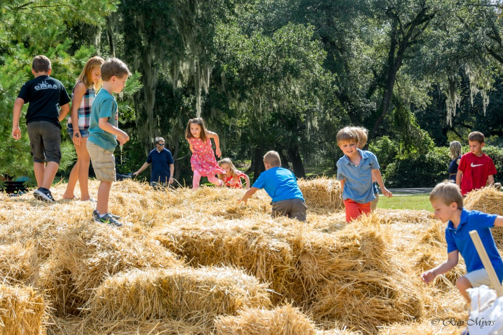 Brookgreen Gardens harvest home festival 2016 hay mountain