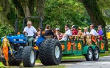 Brookgreen Gardens harvest home festival 2016 hayride