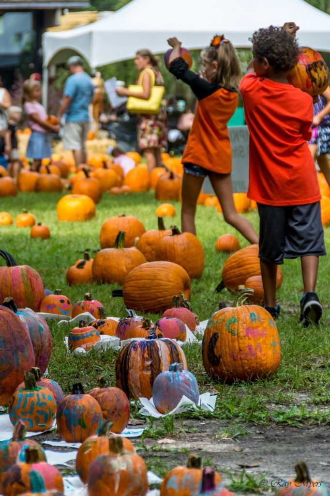 Brookgreen Gardens harvest home festival 2016 Pumpkin patch